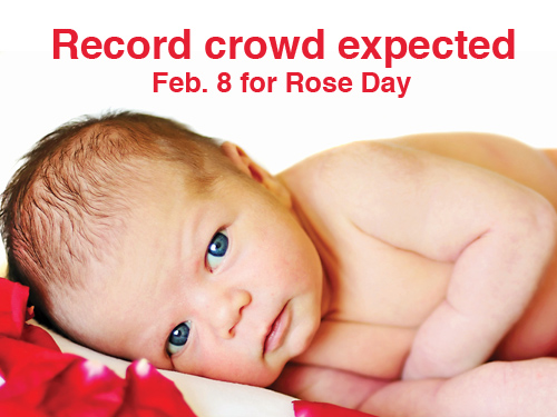 Record crowd expected Feb. 8  for Rose Day  at state capitol