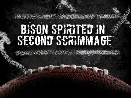 Bison spirited in second scrimmage