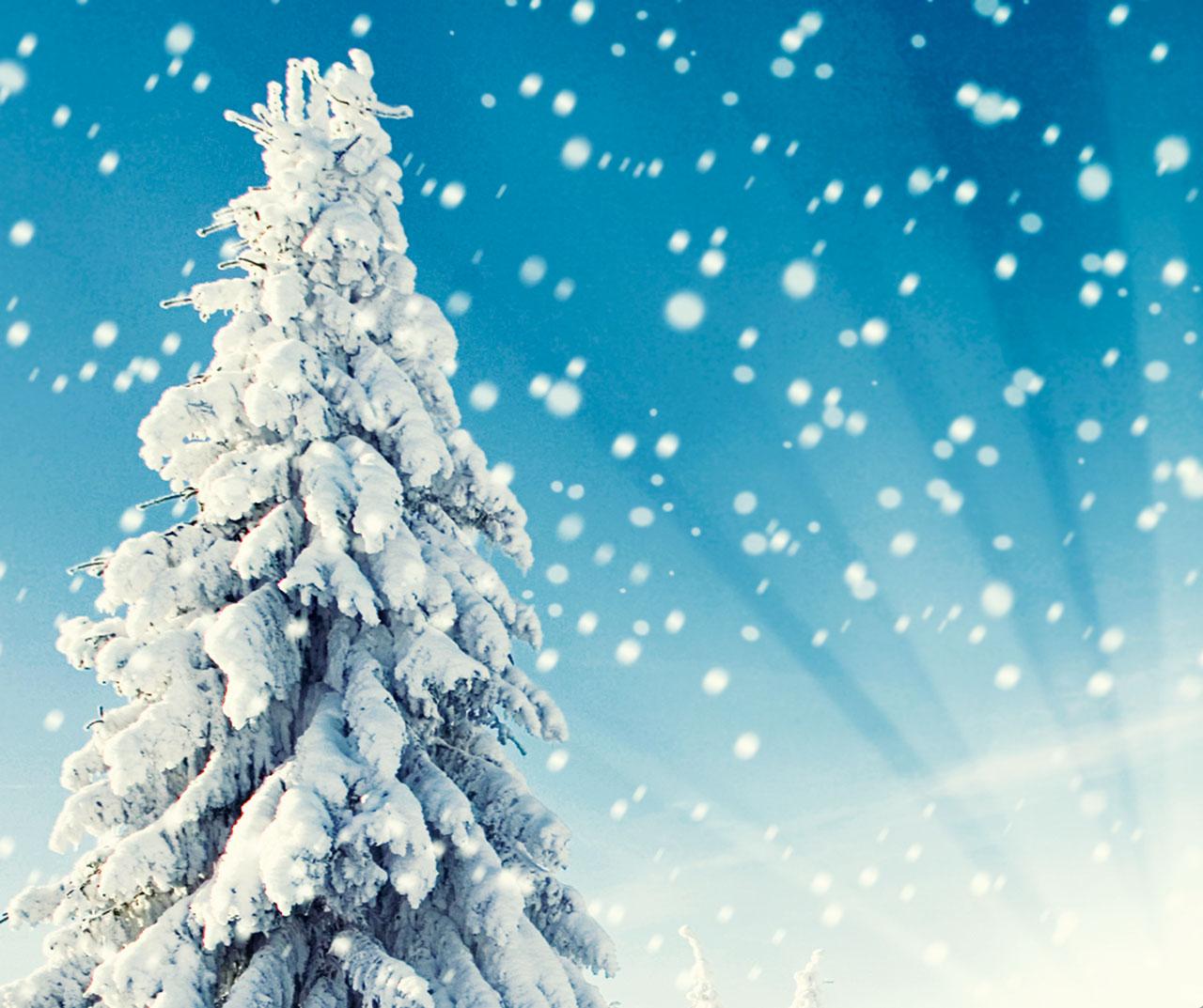 El Mensajero Bautista – Invierno 2013/2014