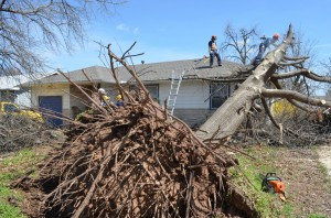 A chain saw crew from the Northeastern Baptist Association works on removing a massive tree from a homeowner's residence in Sand Springs. (Photo: Bob Nigh)