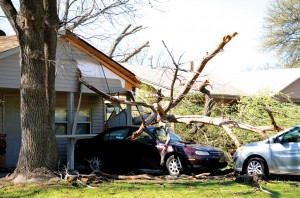 A tree fell on cars and damaged a roof in northwest Oklahoma City (Photo: Bob Nigh)