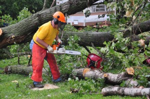 Dennis Troyer cuts up a fallen tree. (Photo: David Crowell)