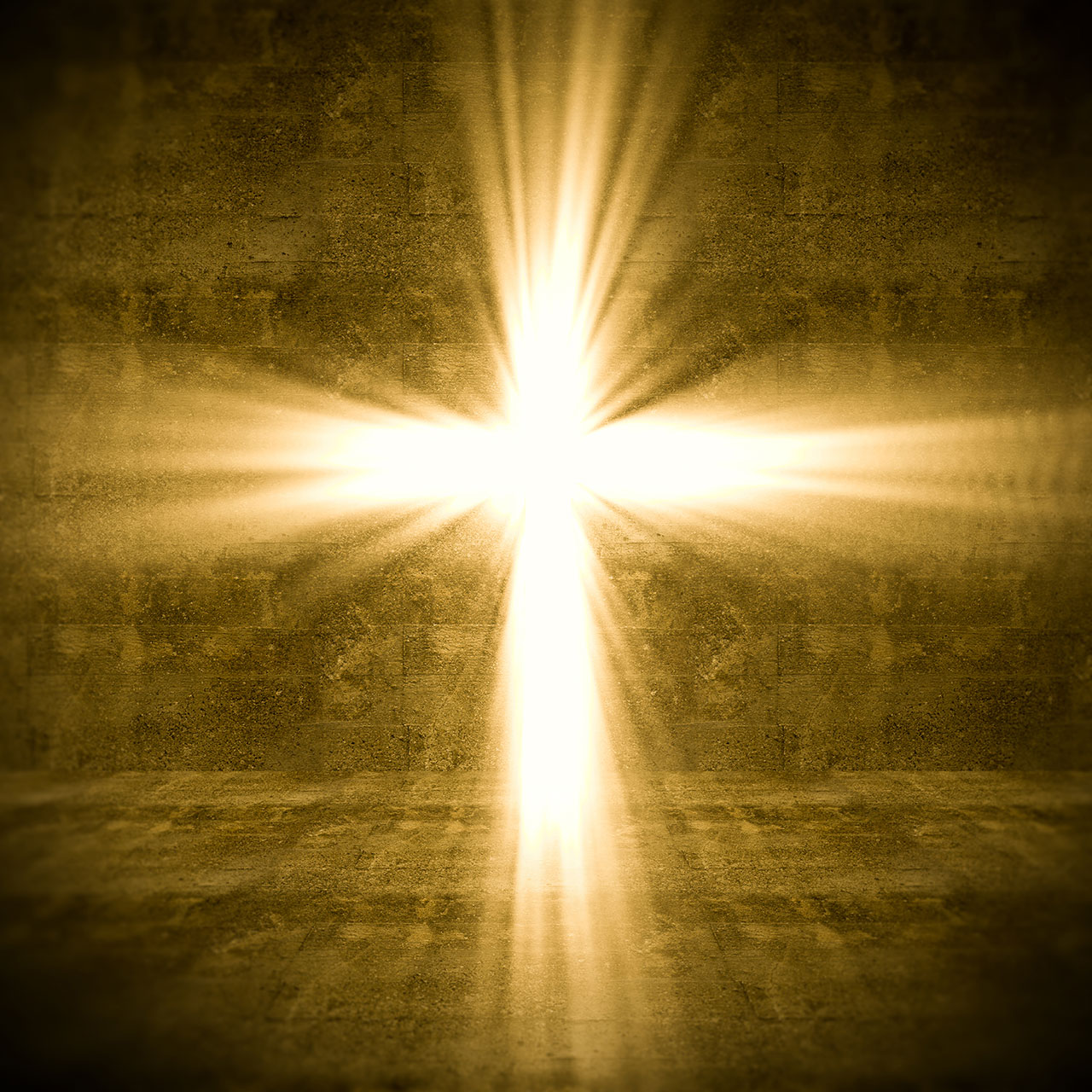 Shine: I had preached against every sin, but one