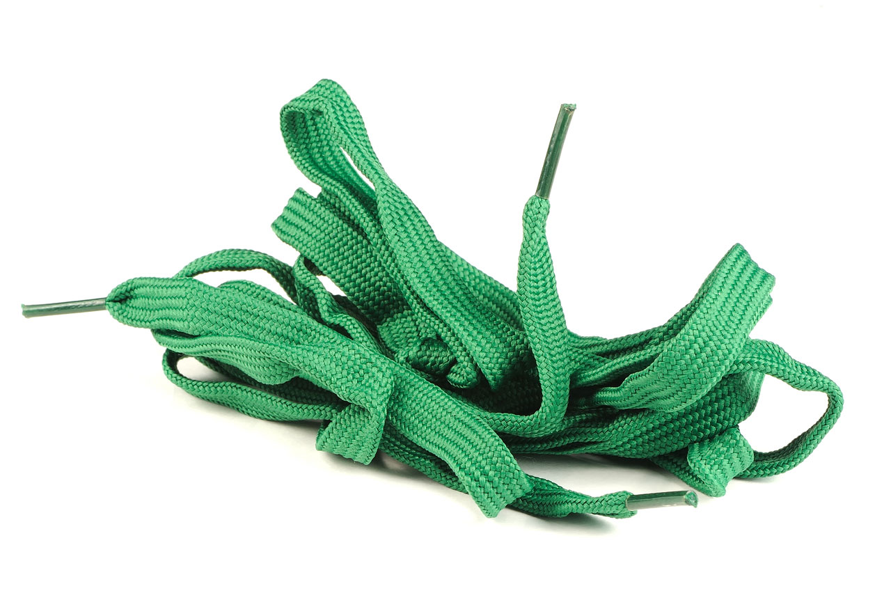 Rite of passage: The shoestring snake
