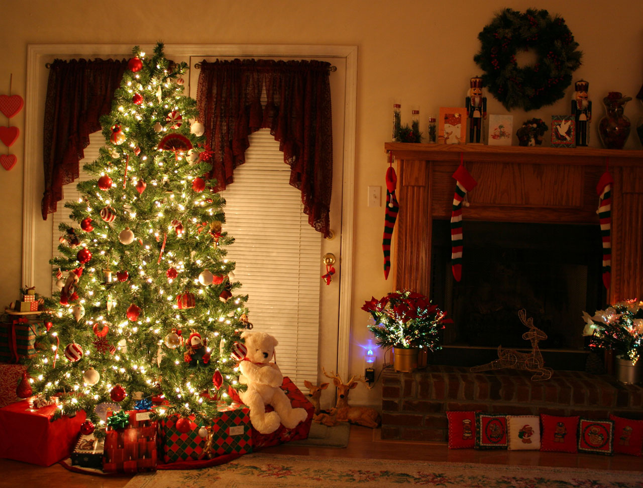 Rite Of Passage: The Most Beautiful Ugly Christmas Tree