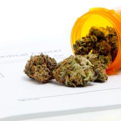 Oklahoma voters approve 'medical marijuana' (SQ 788)