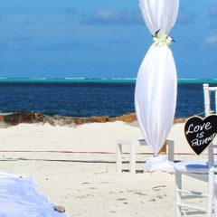 Shine: Destination wedding