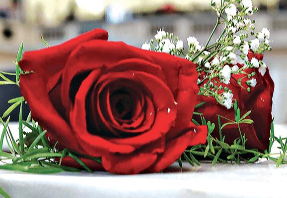 Jen Bricker to speak at 2019 Rose Day Rally