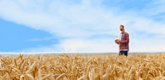 Showing your appreciation to a multi-vocational pastor