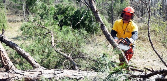 Disaster Relief Appreciation Day set for Nov. 10