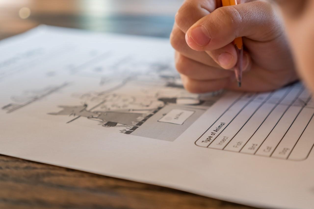 Strategic Grading for Strange Schooling