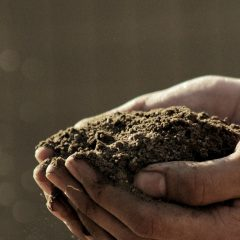 BLOG: Don't Be Displaced Soil