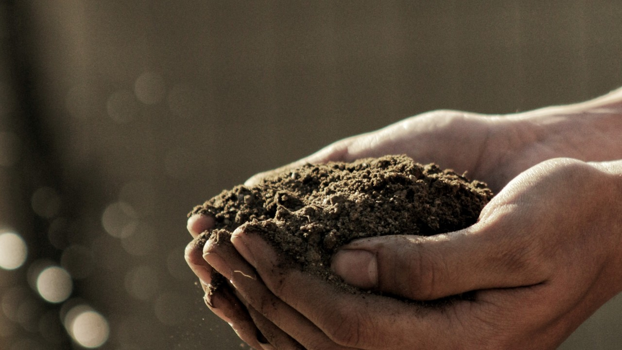 BLOG: Displaced Soil
