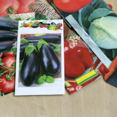 BLOG: Plant More than Just Vegetable Seeds