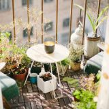 BLOG: Create your own small morning garden