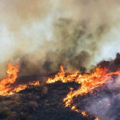 Messenger Insight 400 – Churches Respond to California Fires