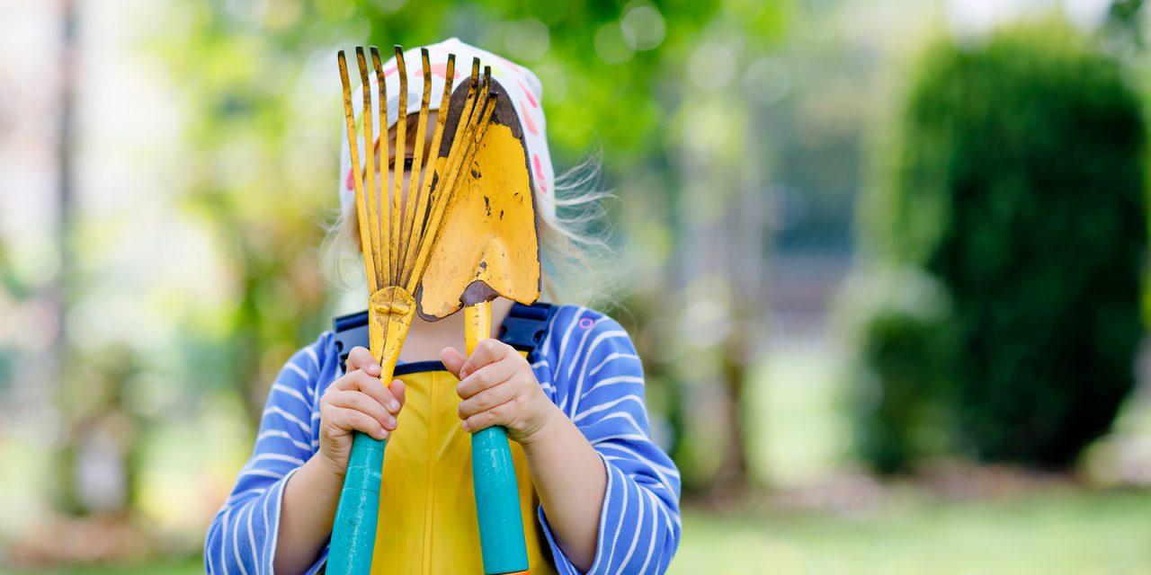 Blog: KinderGARDENing