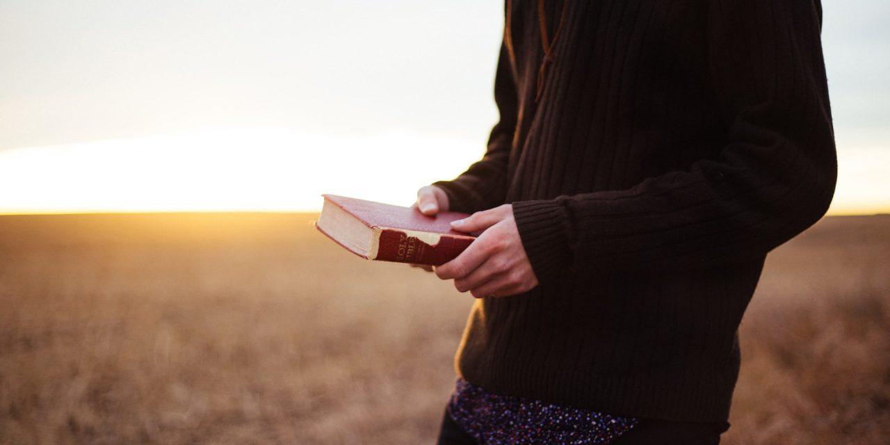 Sword & trowel: Imitate their faith